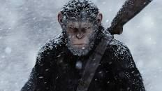 War for the Planet of the Apes seals the blockbuster trilogy's status as the decade's best - Vox