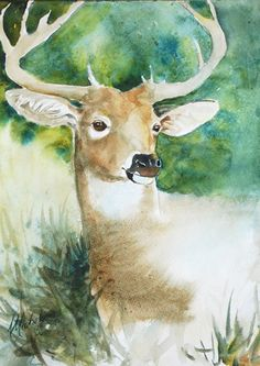 """Forest Spirit"" original wildlife deer watercolor painting by Anne Michelsen"