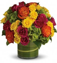 Blossoms in Vogue  Brilliant green hydrangea, hot pink and bi-color roses, hot pink and yellow spray roses and greens are hand-delivered in stunning style: a wide cylinder vase that's been elegantly lined with leaves.