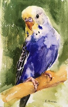 Katya Minkina – Portfolio of Works: Pets/Commissions Katya Minkina – Portfolio of Works: Haustiere / Kommissionen Watercolor Bird, Watercolor Animals, Watercolor Paintings, Watercolor Portraits, Watercolor Landscape, Abstract Paintings, Watercolors, Colorful Animal Paintings, Bird Paintings