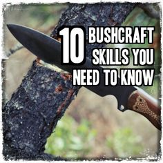 10 Bushcraft Skills You Need To Know