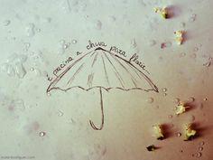 É preciso amor Pra poder pulsar É preciso paz pra poder sorrir É preciso a chuva para florir  Penso que cumprir a vida Seja simplesmente Compreender a marcha E ir tocando em frente ...  É preciso amor Pra poder pulsar É preciso paz pra poder sorrir É preciso a chuva para florir ...  Cada um de nós compõe a sua história Cada ser em si Carrega o dom de ser capaz E ser feliz  Tocando em Frente [Almir Sater]  Imagem Malani Rodrigues - Fotografia