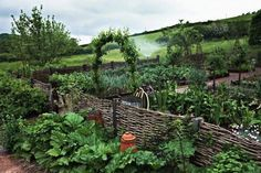 Kitchen vegetable garden enclosed by a wattle fence and bordered by rhubarb jardin potager bauerngarten Potager Garden, Veg Garden, Garden Cottage, Garden Fencing, Edible Garden, Garden Landscaping, Permaculture Garden, Garden Stakes, Gardening Tools