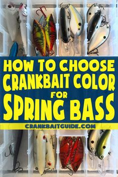 What Crankbait Color to Throw in Spring For More Bass?-What Crankbait Color to Throw in Spring For More Bass? – Crankbait Guide How to choose crankbait color for spring bass fishing - Bass Fishing Lures, Gone Fishing, Best Fishing, Trout Fishing, Fishing Boats, Fishing Tackle, Fishing Stuff, Kayak Fishing, Fishing Reels