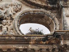 Giovanni Sottile: Penthouse with view  El Puerto de Santa Maria, Espana