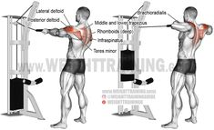 Standing cable rear delt row with rope. A compound exercise. Target muscle: Posterior Deltoid. Synergists: Infraspinatus, Teres Minor, Lateral Deltoid, Middle and Lower Trapezius, Rhomboids, Brachialis, and Brachioradialis. Dynamic stabilizer: Biceps Brac https://www.musclesaurus.com/