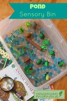Pond Sensory Bin - Have you ever tried out sensory bins with your little one? They are simple to pull together but give hours of entertainment, learning, and skill building. This one is perfect if you are doing a pond unit study or just simply for fun. Sensory Tubs, Sensory Boxes, Sensory Activities, Sensory Play, Learning Activities, Preschool Activities, Sensory Diet, Toddler Sensory Bins, Reptiles Preschool