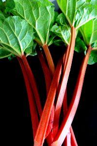 Rhubarb Garden, Plants, Garten, Lawn And Garden, Gardens, Plant, Gardening, Outdoor, Yard
