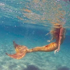 mahina mermaid : Photo