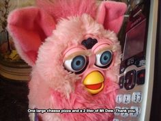 But Furby seems pretty cool at first. He shares your interests. He lures you into friendship. | 21 Signs Your Furby Is Trying To Kill You