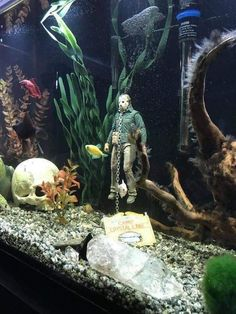Rare Horror on Jason Voorhees at the bottom of aquarium! Fish Tank Terrarium, Terrarium Reptile, Betta Fish Tank, Aquarium Fish Tank, Axolotl Tank, Fish Tank Themes, Cool Fish Tanks, Amazing Fish Tanks, Awesome Tanks