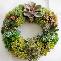 DIY Reusable Wreath Form Tutorial by RootedInSucculents on Etsy