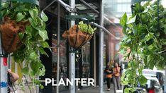 Softwalks NYC. Planter