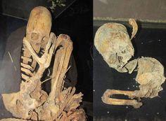 Arqueólogos finlandeses que trabalhavam perto da aldeia de Patapatani, na Bolívia, recentemente encontraram mais esqueletos com crânios alongados.