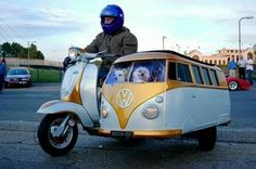 VW Scooter with VW Bus sidecar for Doxie transport
