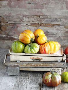 heirloom Tomaten. nicht hübsch, wie aus dem Supermarkt, aber seeeehhhhr geschmacksintensiv!  Schau auch auf http://www.tomatetomate.eu