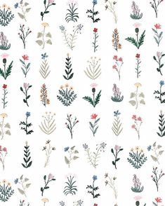 Flowers illustration tattoo sketch 68 ideas for 2019 Flower Patterns, Flower Designs, Print Patterns, Flower Pattern Drawing, Pattern Flower, Pattern Print, Boho Pattern, Pattern Design, Nature Pattern