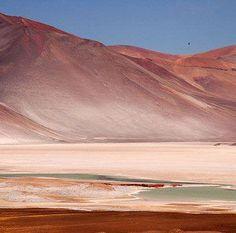 ¿Sabías que el desierto de Atacama en Chile es uno de los lugares más secos del planeta? En 1971 llovió allí por primera vez después de cuatro siglos.