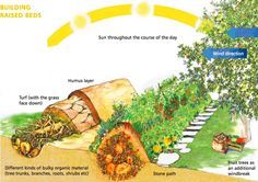 The Many Benefits of Hugelkultur ... are no-dig raised beds with a difference. They hold moisture, build fertility, maximise surface volume and are great spaces for growing fruit, vegetables and herbs.
