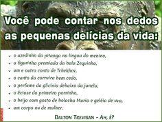 Grafados: Dalton Trevisan - As pequenas delícias da vida