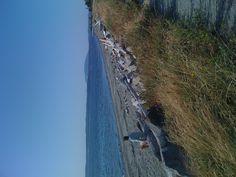 Lopez Island.