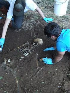 forensic anthropology   Workshops : Forensic Anthropology Center : Texas State University