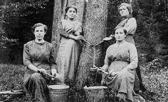 Archäologisches Spessartprojekt e.V. - Kulturlandschaft - Der Spessart in alten Ansichten -Frauen beim Harzzapfen, um 1916