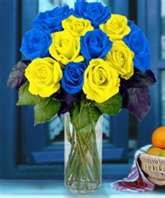 blue-and-yellow roses