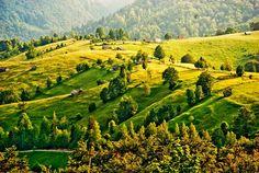 Dambovicioara, Arges ♦ Romania #romania