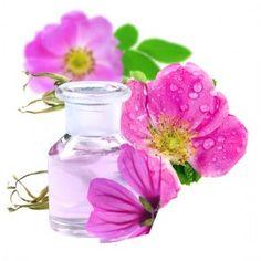 Esencia aromática de Rosa Mosqueta