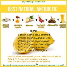 Best natural Antibiotic