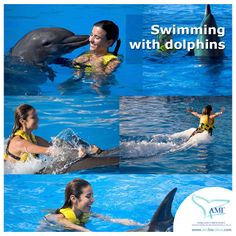 Swimming with dolphins will make your trip to #LosCabos #Mexico an unforgettable one!