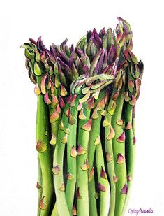 Asparagus Painting  Mixed Media Original  by cathysavelspaintings, $450.00