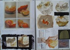 Art Sketchbook Ideas: Creative Examples to Inspire High School Students Art Sketchbook Ideas: Creative Examples to Inspire High School StudentsLast updated November article provides tips and guidan A Level Art Sketchbook, Sketchbook Layout, Sketchbook Pages, Sketchbook Inspiration, Sketchbook Ideas, Textiles Sketchbook, Life Inspiration, Juan Sanchez Cotan, Textiles Y Moda