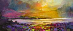 Scottish Highlands Heather images