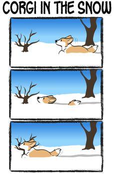 Corgi Logic - Corgi In The Snow by HenriSkunk on deviantART