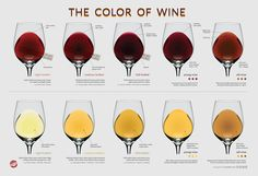Wine Color Chart available at Wine Folly  Very cool tool - your eyes can help tell you about the wine you're about to drink!