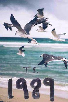1989                                                                                                                                                     Más