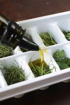 Freeze fresh herbs in olive oil to use the next time you cook.