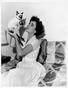 no cat should be that scared looking in to her violet eyes! [Elizabeth Taylor]