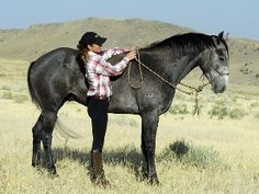 Teach your horse the basics of flexion by using soft hands and smart techniques.