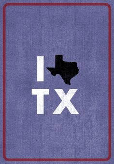 This would make a cute blanket out of denim with appliques.  Texas pride!