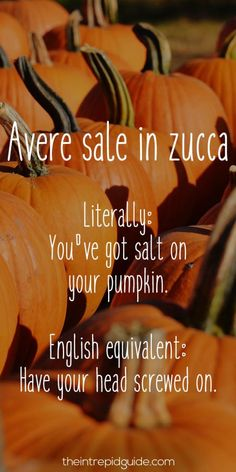 Italian Sayings - 26 Food Related Insults You Won't Forget: Avere sale in zucca ~ To have your head screwed on.