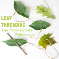 ALL NATURAL LEAF THREADING ACTIVITY for kids - engage with Nature, get creative and develop fine motor skills. This nature craft is fun a great way to get kids outside and develop their fine motor skills. A fun Summer craft for kids. Forest School Activities, Nature Activities, Preschool Activities, Outdoor Activities, Waldorf Preschool, Nursery Activities Eyfs, Autumn Eyfs Activities, Nature Based Preschool, Fine Motor Activities For Kids