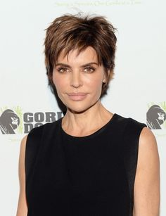 lisa rinna messy cut | actress lisa rinna attends a benefit for gorilla doctors of africa ...
