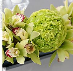 Centerpieces were designed in low rectangular containers that held sprays of green cymbidium orchid sprays accented with grasses, berzilla berries and lady's mantle.