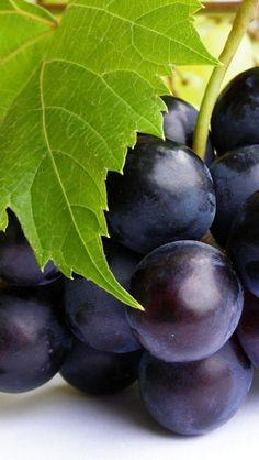 18 Year Old Balsamic Condimento Photo Fruit, Tandoori Masala, In Natura, Black Grapes, Blood Pressure Remedies, Grape Seed Extract, Greens Recipe, Vitamins And Minerals, Milkshakes