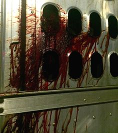 Animal Justice  –  Authorities Investigating After Witness Documents Blood Streaming from Cow Transport Truck