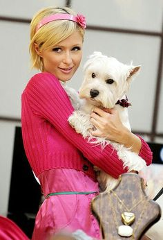 Paris Hilton and  terrier --  animal lovers