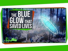 The Strange Blue Glow That Saved Lives